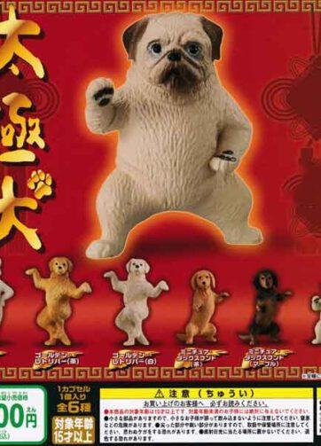 Tai Chi dogs